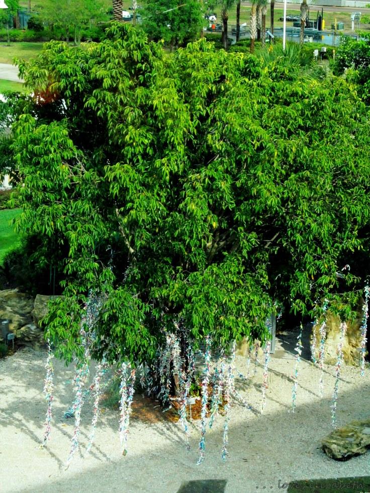Dalí's Wish Tree