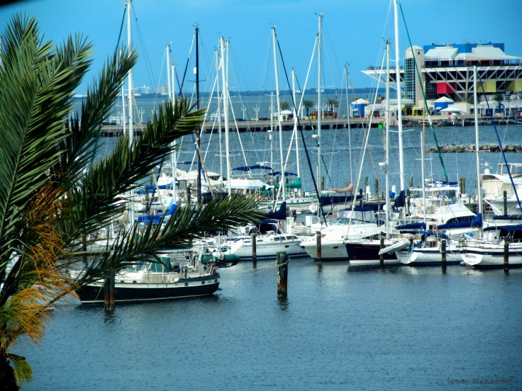 Boats in Tampa Bay