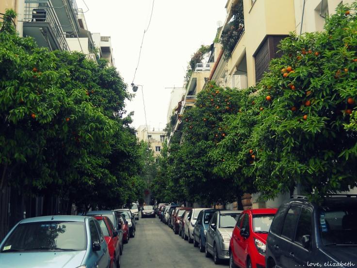 Orange Trees in Athens