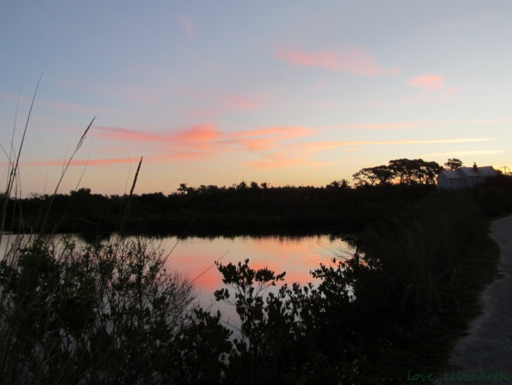 Robinson Preserve Sunrise